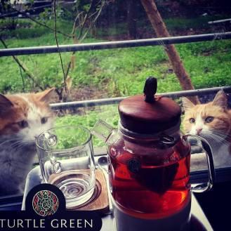 Dozan teapot